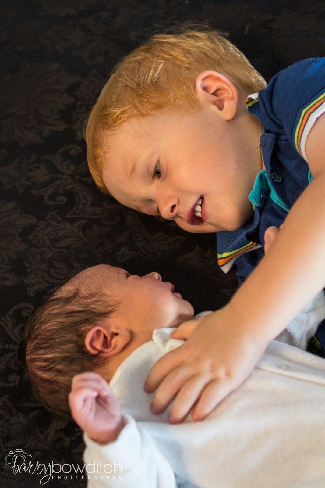 Newborn - Bowditch Photography
